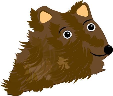 cubby: Bear