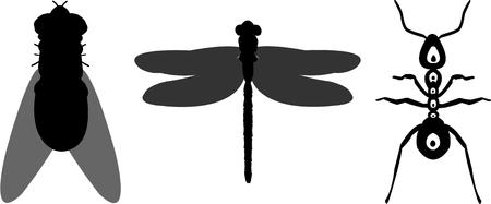 gnat: The important thing to remember is that bugs dont actually talk. Illustration