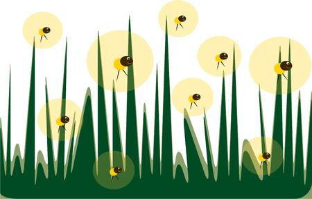 fireflies: Bring happy memories of summer evenings chasing fireflies with this design.  Use as part of your summer party dcor for a fun touch. Illustration