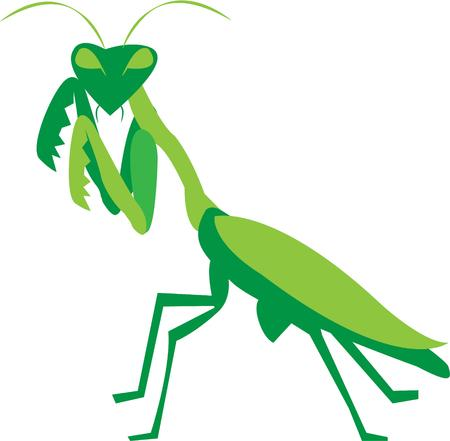 praying mantis: As menacing as he looks he is actually a garden hero.  Add this praying mantis to your garden projects for something unexpected
