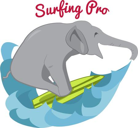 humorous: What could be more humorous than a surfing elephant.  This unexpected event adds a bit of humor to any project.