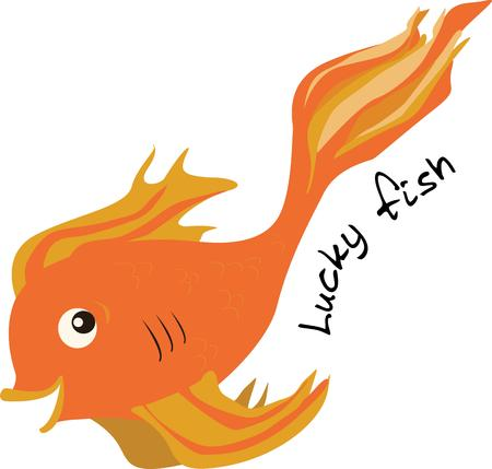 oranda: Swim in your direction with this exotic goldfish.  Not at all your average fish