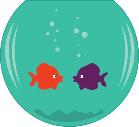 true love: Two fish in a bowl find love at first site.  True love in a fish bowl