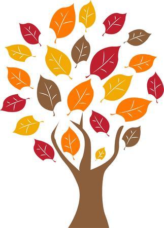 hojas de colores: Un �rbol hermoso del oto�o con hojas de colores.