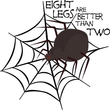 web2: Spider lovers will like a cute friend.