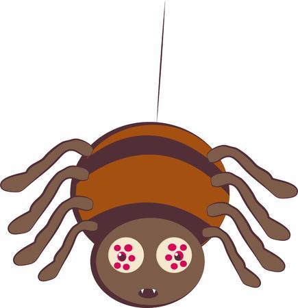 viuda: Los amantes de la ara�a va a gustar un amigo lindo.