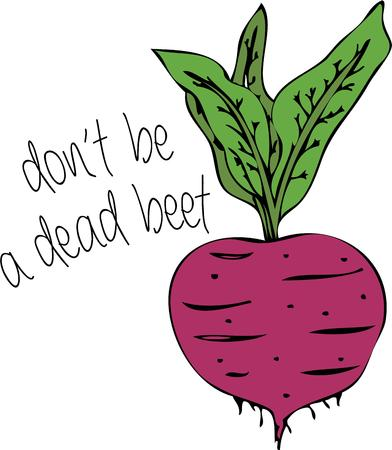 beet root: Cooks and vegetarians will like this sweet beet. Illustration