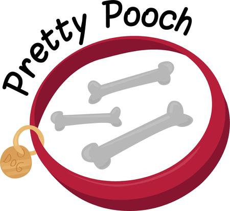 pooch: Show how much you love your pet with a new collar.