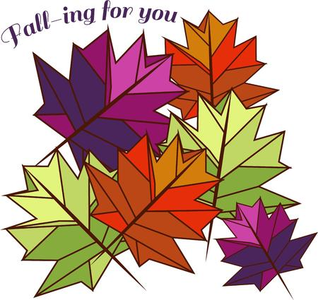fall leaves: Colorful leaves make a beautiful fall decoration.