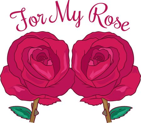 twosome: Roses are the most beautiful flower.  This lovely twosome of roses is the perfect decoration for your projets. Illustration