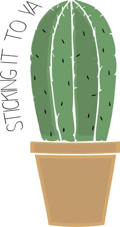 cereus: Gardeners like plants of all kinds even cacti.