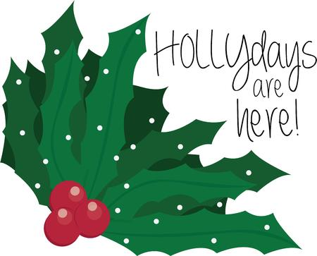 greenery: Holly is Christmas greenery. Illustration