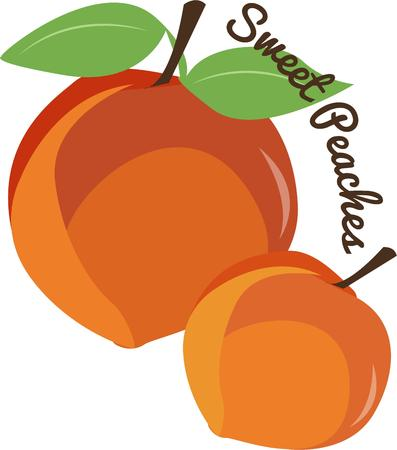 peaches: Beautiful juicy looking peaches are perfect kitchen decor. Illustration