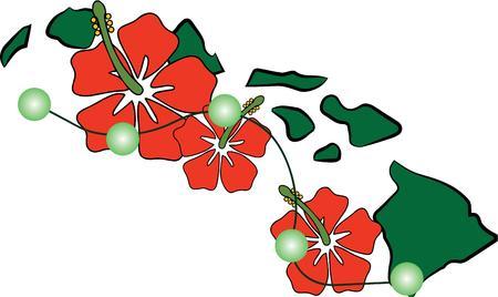 laurier rose: Montrez votre amour pour les �les hawa�ennes avec ces fleurs. Illustration