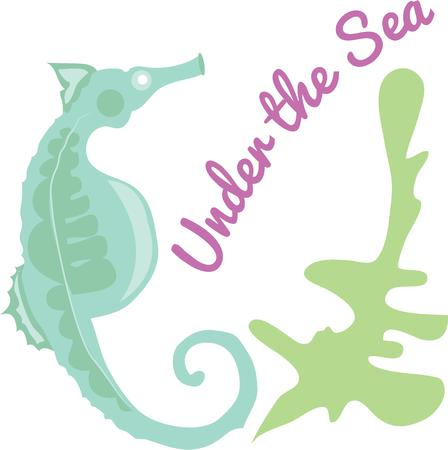accent: A seahorse is a beautiful beach accent.