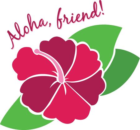 say hello: Say hello Hawaiian style with a tropical flower.