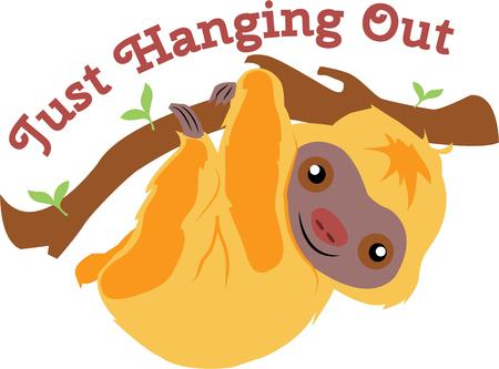 have fun: Animal lovers will have fun with a cute tree sloth. Illustration