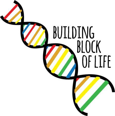 楽しんで: Scientists will have fun with a DNA chain.