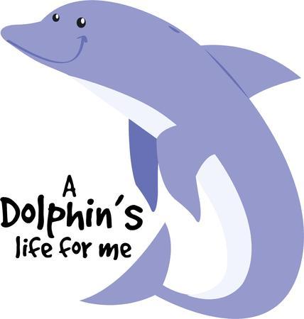cetacean: A dolphin is a beautiful ocean friend.
