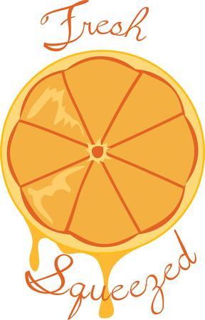 florida citrus: A delicious juicy orange is always a good treat. Illustration