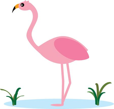 fowls: Flamingos are a classic beach decoration.