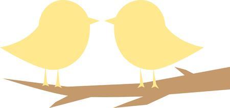 song bird: Do you love me because im beautiful or am i beautiful because you love me