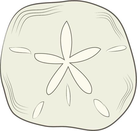 sand dollar: Un d�lar de arena es una gran decoraci�n de playa.