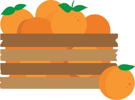 florida citrus: This crate of oranges for any citrus lover. Illustration