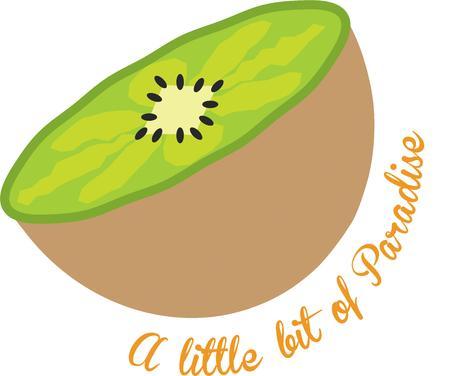 kiwi fruit: Disfrute el sabor de la fruta de kiwi con este dise�o Vectores