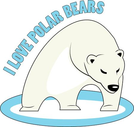silvertip bear: Use this polar bear for a fun winter project. Illustration