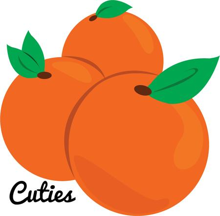 florida citrus: Use these oranges for your favorite fruit lover.