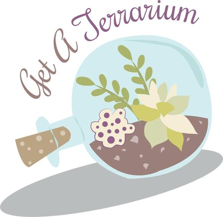 terrarium: Create something beautiful and bring a bit of nature into your home.