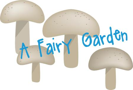 fungi: Add whimsy to a project with these fungi.