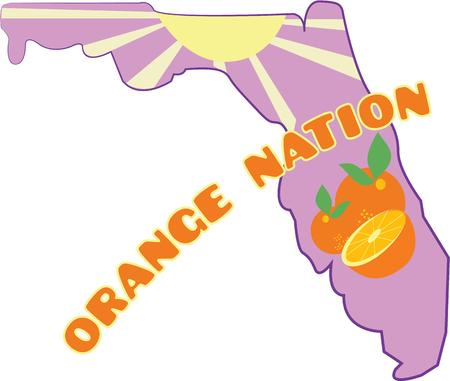 florida citrus: Use this Florida map for a sunshine project. Illustration