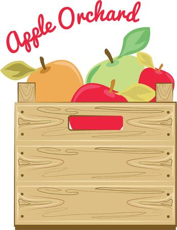 dcor: Put these harvest apples in your kitchen for a colorful dcor.