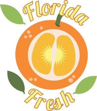 florida citrus: A colorful orange will make a wonderful kitchen accent.