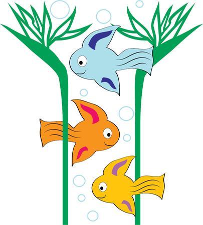 bunter fisch: Akzent einen Strand Projekt mit bunten Fischen.