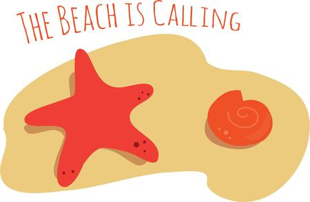 misses: This seashell design is perfect for anyone who misses the beach.