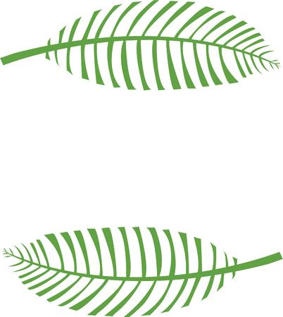 fronds: Make a great project for palm Sunday.