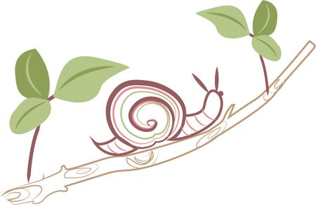 gastropod: People will know your are relaxing with this snail.