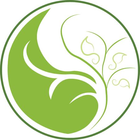 harmony nature: Display a love of harmony with a nature yin yang. Illustration