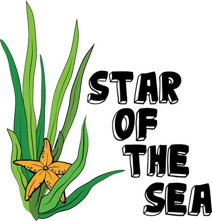 kelp: Make a beautiful beach project with a starfish.