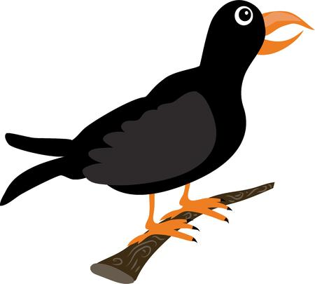 fowls: A blackbird is a great decoration for a nature lover.