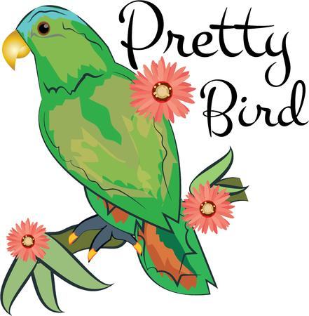 polly: Spread cheery tropical flavor around the home with this colorful parrot design on throw pillows napkins sweatshirts bags and more