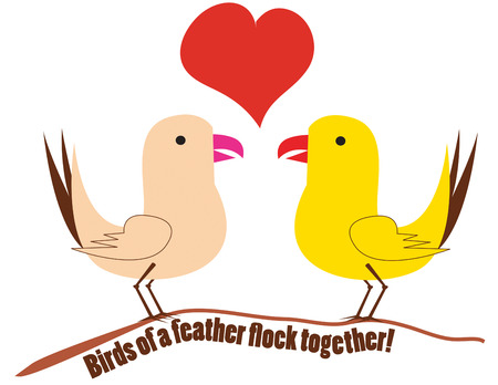 animal lover: These two birds have found each other  they have found love  Love birds make a super Valentine greeting for any animal lover.