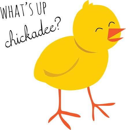 chick: A cute baby chick that everyone will find adorable. Illustration