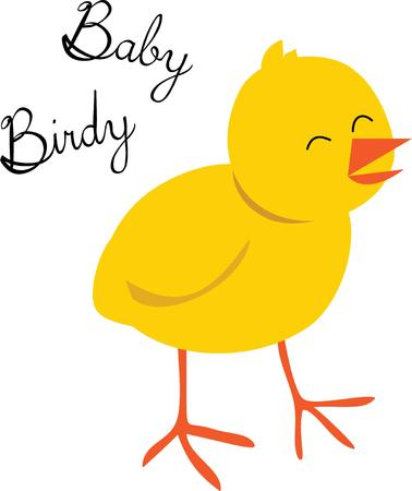 fowls: A cute baby chick that everyone will find adorable. Illustration