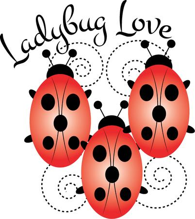 possibilities: Ladybug lovers will enjoy this versatile and fun design that offers endless possibilities on any project. Illustration