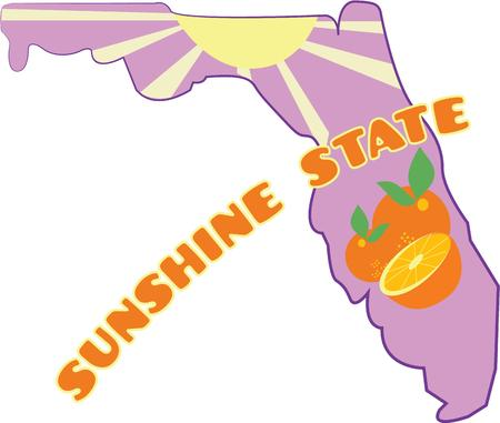 sunshine state: Use this State map for your geography projects in school. Perfect to build your own map to use when teaching the states. Illustration
