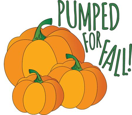 pumped: Pumpkins are the perfect fall design.  Use with your Halloween or Thanksgiving decor.